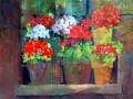 venezia-geraniums-trimmed-p