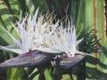 """GAIL ALGER """"DOUBLE WHITE BIRD"""""""